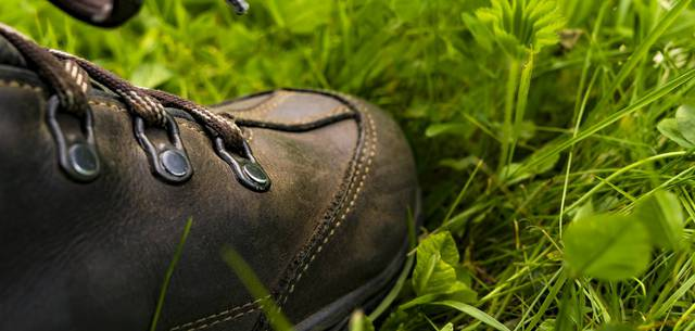 Bottine marchant dans l'herbe